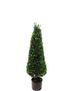 "Boxwood Topiary Cone - 39"" Tall - Green"