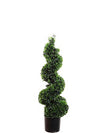 "Boxwood Topiary Spiral - 38"" Tall - Green"