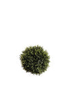 "Cedar Ball - 6.5"" Diameter - Box of 6 - Green"