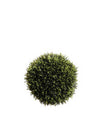 "Cedar Ball - 9"" Diameter - Box of 4 - Green"