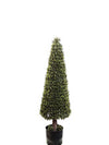 "Cedar Topiary Cone - 40"" Tall - Green"