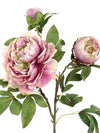 "Peony Stem - 33"" Tall x 6"" Diameter - Set of 12 - Choice of Color"