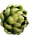 "Artichoke - 5.5"" Diameter - Box of 6 - Choice of Color"