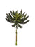 "Sedum Succulent - 9.5"" Tall x 5.5"" Diameter - Set of 12 - Green"