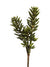 "Sedum Succulent Spray - 16"" Tall - Set of 6 - Green"