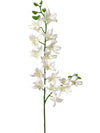 "Dendrobium Orchid Stem - 34"" Tall - Box of 12 - Choice of Color"
