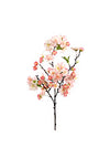 "Cherry Blossom Branch Spray - 18""  Tall - Box of 12 - Choice of Color"