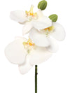 "Phalaenopsis Orchid Pick - 10"" Tall - Box of 12 - Choice of Color"