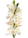 "Cymbidium Orchid Stem - 38"" Tall - Set of 6 - Choice of Color"