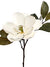 "Magnolia Stem - 23"" Tall - Box of 12 - White"