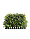 "Boxwood Mat - 12"" Square - Box of 12 - Green"