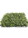 "Boxwood Mat - 20"" Square - Box of 4 - Green"
