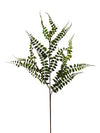 "Buckler Fern Spray - 36"" Tall - Set of 12 - Green"