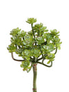 "Senecio Succulent Spray - 8"" Tall - Box of 12 - Choice of Color"