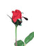 "Planters Rose Bud Stem - 23"" Tall - Box of 36 - Choice of Color"
