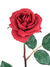 "Planters Rose Stem - 23"" Tall - Set of 12 - Choice of Color"
