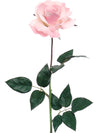"Planters Rose Stem - 28"" Tall - Box of 12 - Choice of Color"