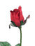 "Planters Rose Bud Stem - 27"" Tall - Set of 12 - Choice of Color"