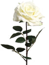 "Queen Anne Rose Stem - 30"" Tall - Box of 12 - Choice of Color"