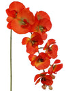 "Phalaenopsis Orchid Stem - 33.5"" Tall - Set of 12 - Choice of Color"