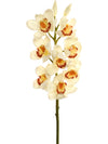 "Cymbidium Orchid Stem - 30"" Tall - Box of 12 - Choice of Color"