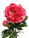 "Peony Stem - 30"" Tall - Set of 12 - Choice of Color"