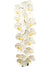 "Phalaenopsis Orchid Stem - 49"" Tall - Box of 6 - Choice of Color"