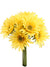 "Gerbera Daisy Bundle - 14"" Tall - Box of 24 - Choice of Color"