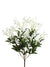 "Gypsophila Bush - 19"" Tall - Box of 12 - White"