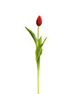"Tulip Bud Stem - 17"" Tall - Set of 24 - Choice of Color"