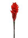 "Ginger Flower Stem - 32"" Tall - Set of 12 - Red"