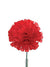 "Carnation Pick - 5"" Tall x 3.5"" Diameter - Box of 100 - Choice of Color"