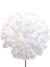 "Chrysanthemum Pick - 8"" Tall x 5"" Diameter - Box of 12 - Choice of Color"