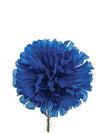 "Carnation Pick - 5"" Tall x 4.25"" Diameter - Box of 100 - Choice of Color"