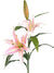"Casablanca Lily Spray - 34"" Tall - Box of 12 - Choice of Color"