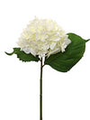 "Hydrangea Stem - 12"" Tall - Box of 12 - Choice of Color"
