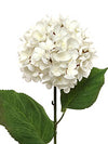 "Hydrangea Stem - 22"" Tall - Box of 12 - Choice of Color"