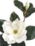 "Magnolia Stem - 27"" Tall x 7"" Diameter - Box of 6 - White"