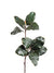 "Magnolia Foliage Spray - 29"" Tall - Box of 12 - Green"