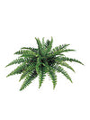"Boston Fern - 34"" Diameter with 35 Fronds - Box of 6 - Green"