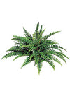 "Boston Fern - 34"" Diameter with 50 Fronds - Set of 6 - Green"