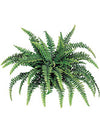"Boston Fern - 48"" Diameter with 60 Fronds - Set of 4 - Green"