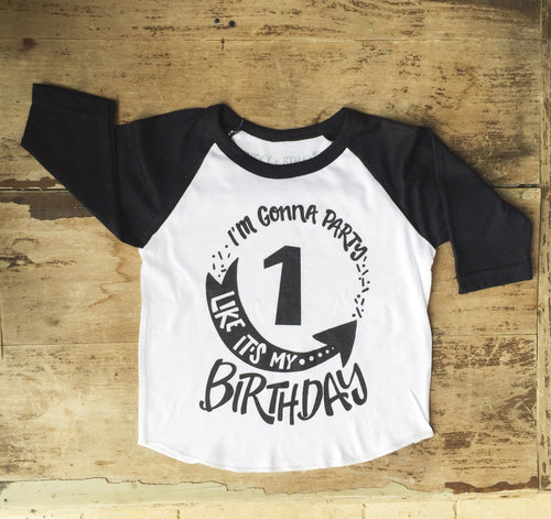Party Like It's My Birthday Raglan
