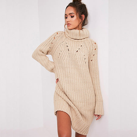 CamKemsey Casual Turtleneck Knitted Sweater Dress Long Sleeve Loose Knit Tunic Dress Female Pullover Autumn Winter Dress