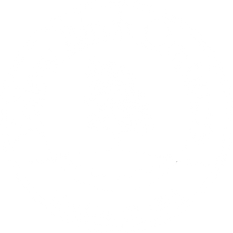 Yellow Birch Outfitters