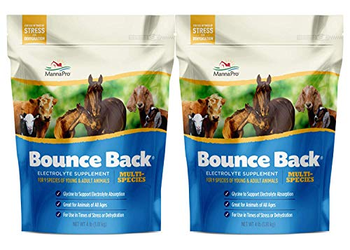 Manna Pro Bounce Back Multi-Species Electrolyte Supplement, 4 lb (Pack of 2)