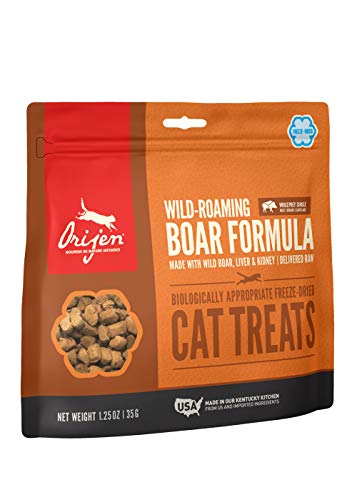 Orijen Wild-Roaming Boar Freeze-Dried Cat Treats | Biologically Appropriate | 1.25oz