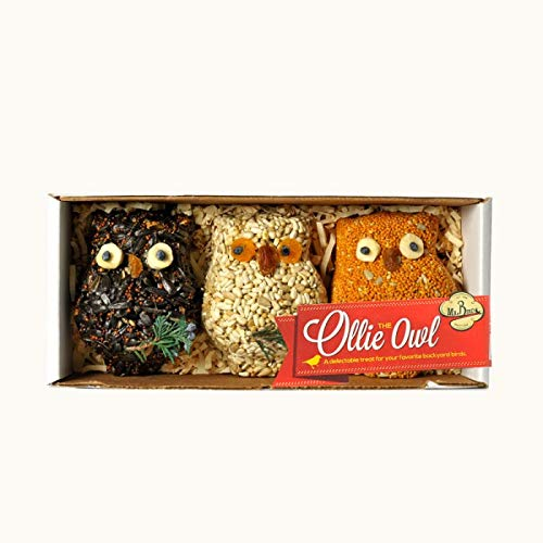 Mr. Bird 3-Pack Ollie Owl Bird Seed Ornaments