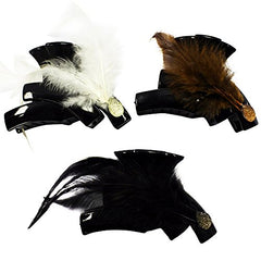 CoverYourHair Jaw Clips - Large Jaw Hair Clip - Claw Hair Clips - (10 Assorted Hair Clips)