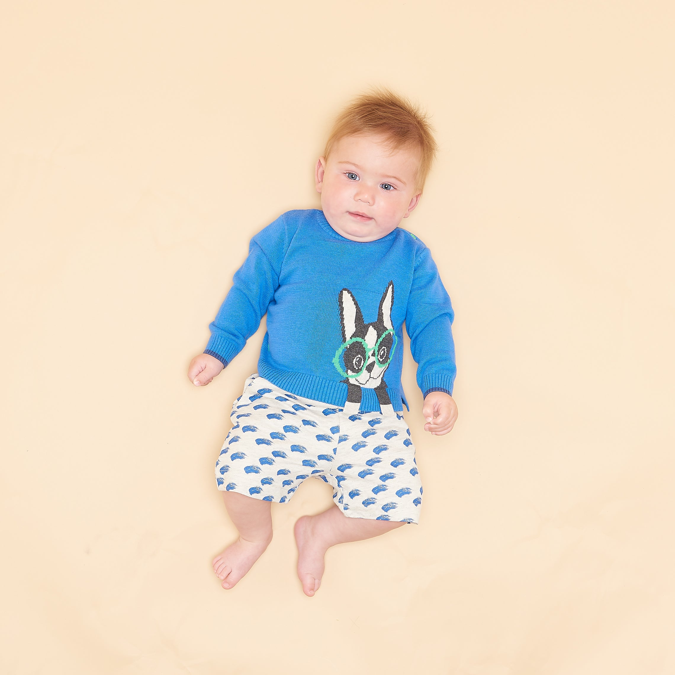 BABY BOY BLUE SURF DOG INTARSIA SWEATER